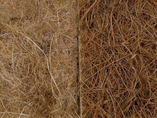 Tessuti protettivi biodegradabili