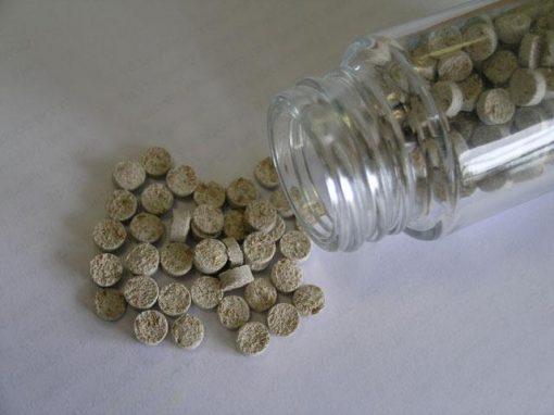 Compositi plastici vegetali